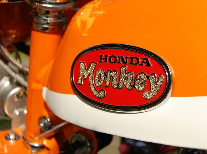 monkey_lucdebondt_2